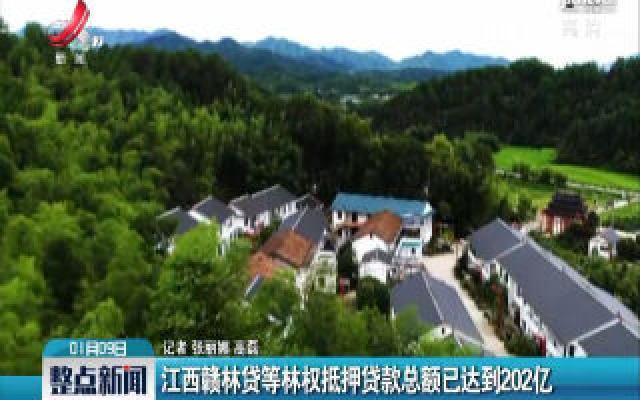 江西赣林贷等林权抵押贷款总额已达到202亿