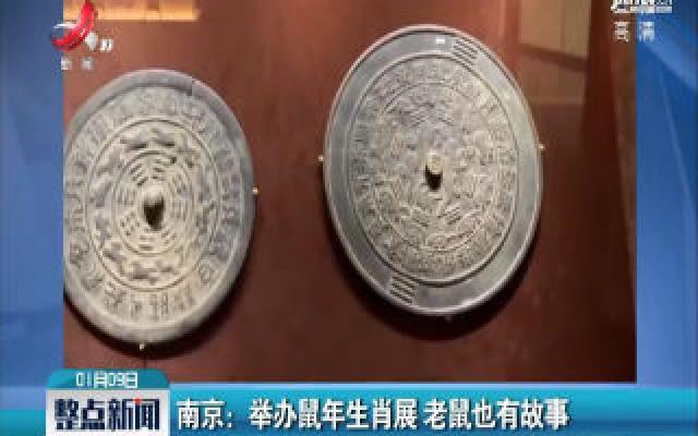 南京:举办鼠年生肖展 老鼠也有故事