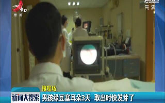 广东东莞:男孩绿豆塞耳朵3天 取出时快发芽了