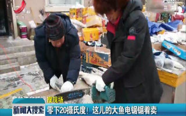 黑龙江:零下20摄氏度! 这儿的大鱼电锯锯着卖
