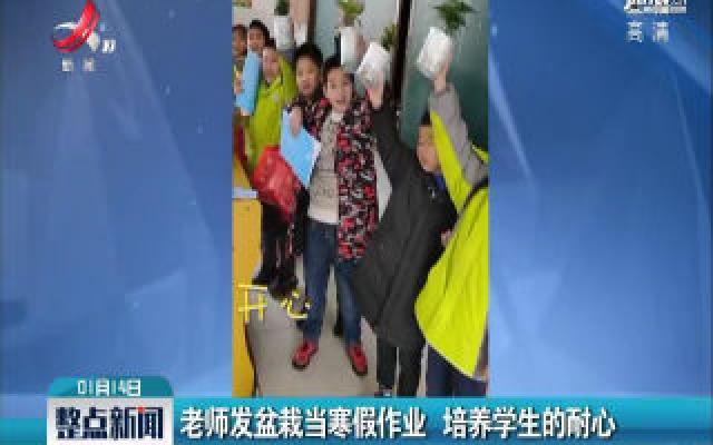抚州:老师发盆栽当寒假作业 培养学生的耐心