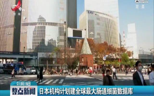 日本机构计划建全球最大肠道细菌数据库