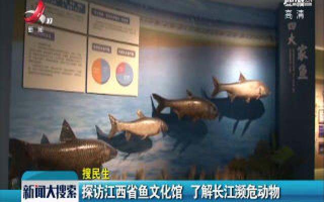 探访江西省鱼文化馆 了解长江濒危动物
