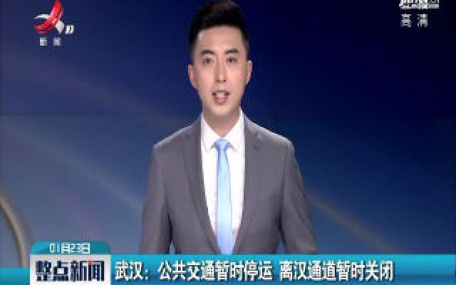 武汉:公共交通暂时停运 离汉通道暂时关闭