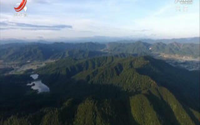 江西将启动长江经济带珍稀树种保护与发展项目