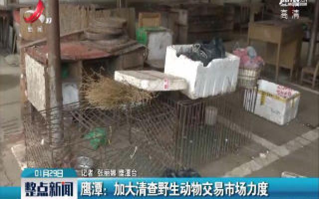 鹰潭:加大清查野生动物交易市场力度