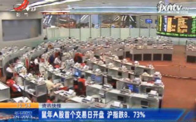 鼠年A股首个交易日开盘 沪指跌8.73%