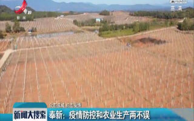 【众志成城 抗击疫情】奉新:疫情防控和农业生产两不误