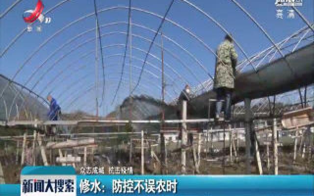 【众志成城 抗击疫情】修水:防控不误农时