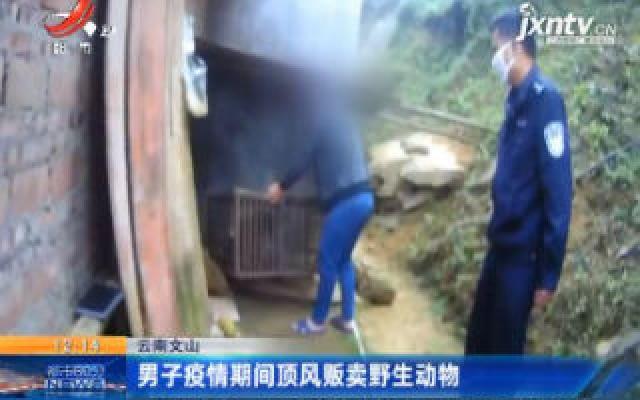 云南文山:男子疫情期间顶风贩卖野生动物
