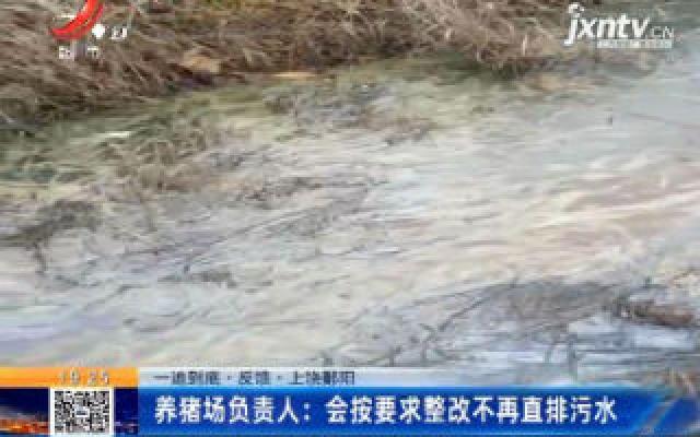 上饶鄱阳:养猪场负责人表示 会按要求整改不再直排污水