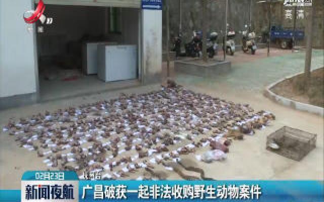 广昌破获一起非法收购野生动物案件