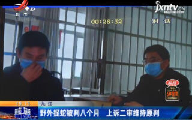九江:野外捉蛇被判八个月 上诉二审维持原判