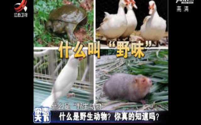 什么是野生动物?你真的知道吗?