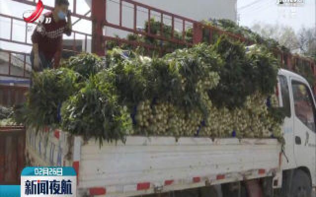 全南:200吨高山蔬菜驰援湖北
