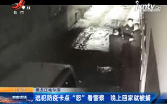 """黑龙江哈尔滨:逃犯防疫卡点""""怒""""看警察 晚上回家就被捕"""