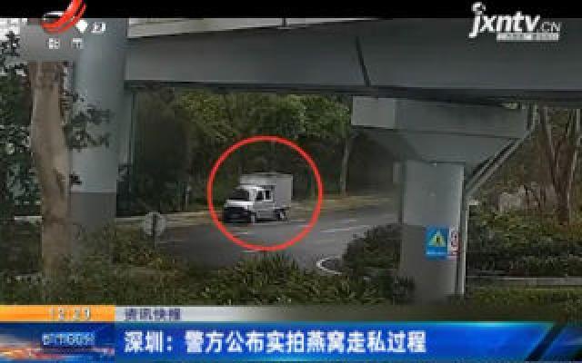 深圳:警方公布实拍燕窝走私过程
