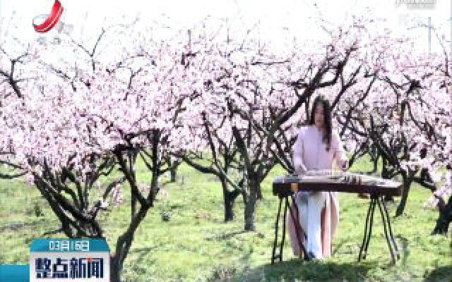 丰城:桃园春色关不住 线上旅游新风尚