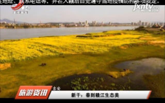 新干:春到赣江生态美