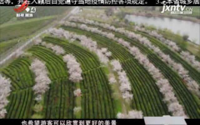 【天下英雄城 我们在行动】《春天在哪里》大型网络直播活动在南昌凤凰沟举行