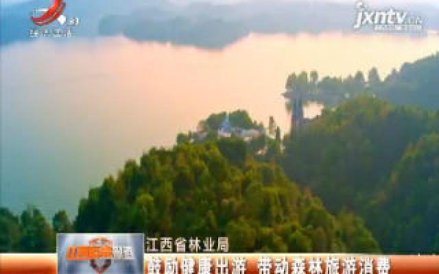 江西省林业局:鼓励健康出游 带动森林旅游消费