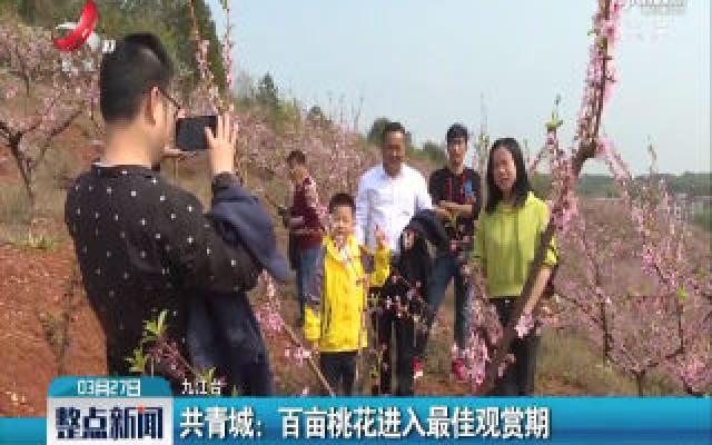 共青城:百亩桃花进入最佳观赏期