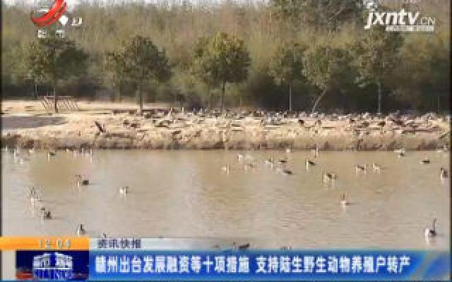 赣州出台发展融资等十项措施 支持陆生野生动物养殖户转产