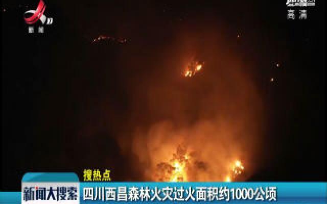 四川西昌森林火灾过火面积约1000公顷