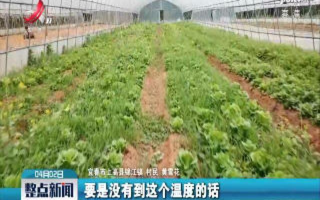 """宜春:多地组织农技员应对 """"倒春寒"""""""