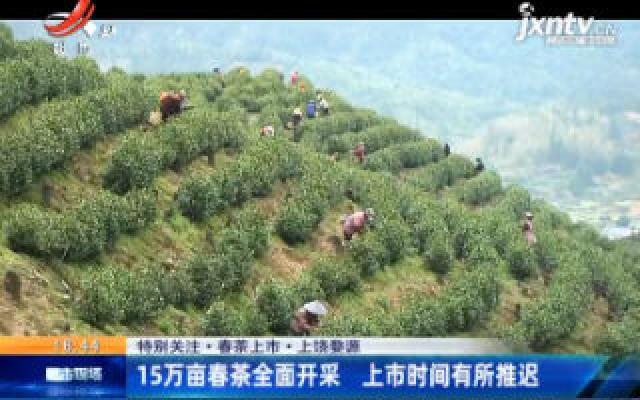 【特别关注·春茶上市】上饶婺源:15万亩春茶全面开采 上市时间有所推迟