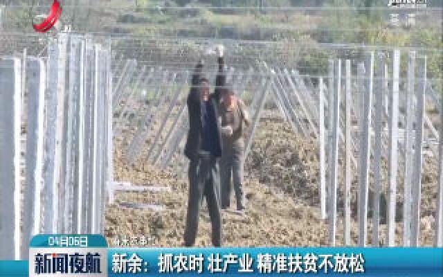 【春来农事忙】新余:抓农时 壮产业 精准扶贫不放松