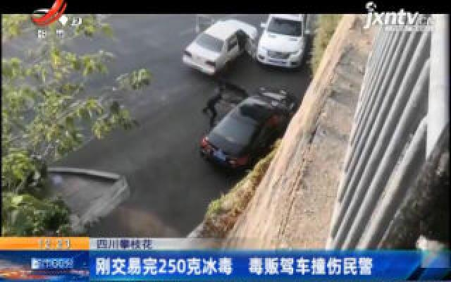 四川攀枝花:刚交易完250克冰毒 毒贩驾车撞伤民警