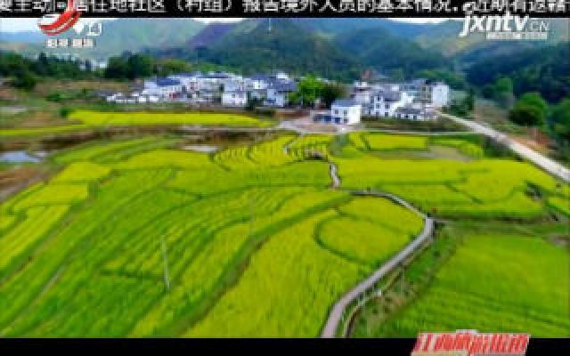 """【八大""""组合拳""""提振旋游消费】2020清明小长假江西省旅游市场逐渐回暖"""