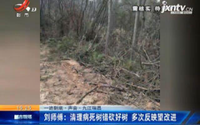 【一追到底·声音】九江瑞昌·刘师傅:清理病死树错砍好树 多次反映望改进
