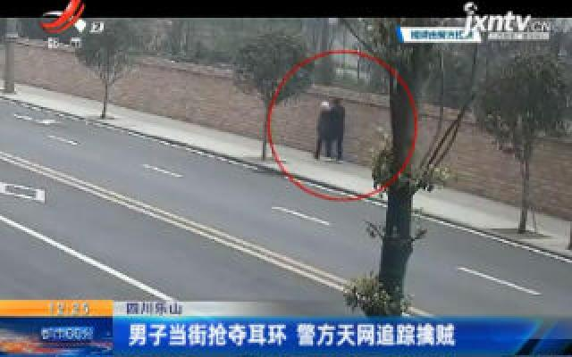 四川乐山:男子当街抢夺耳环 警方天网追踪擒贼