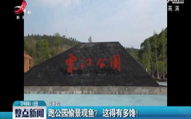 萍乡:跑公园偷景观鱼? 这得有多馋!