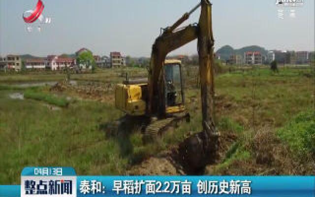 泰和:早稻扩面2.2万亩 创历史新高