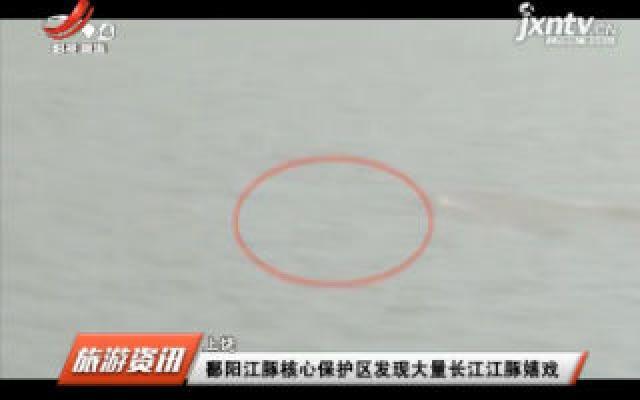 上饶:鄱阳江豚核心保护区发现大量长江江豚嬉戏