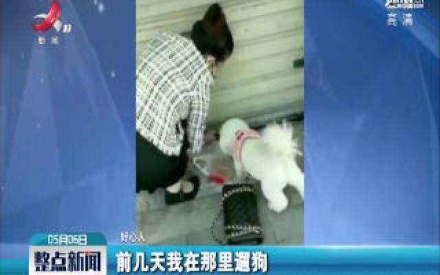 湖北武汉:老板回老家3个月 市民门缝投喂猫咪