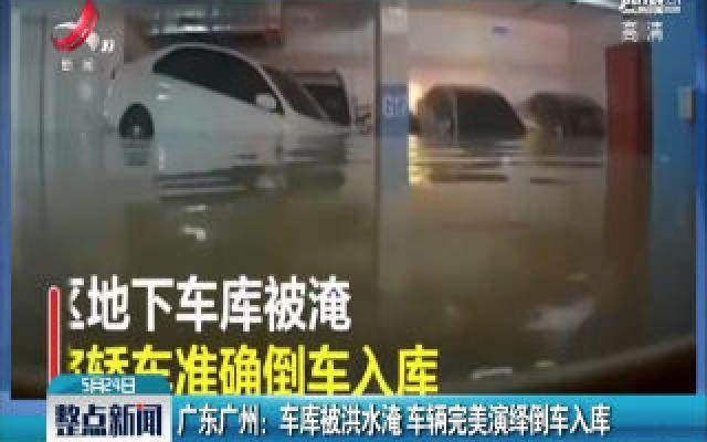 广东广州:车库被洪水淹 车辆完美演绎倒车入库