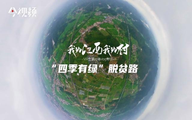 """全景vlog专栏《我的江西我的村》 :""""四季有绿""""脱贫路"""