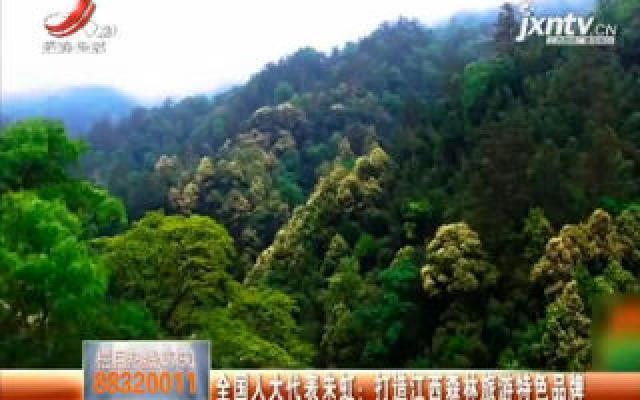 全国人大代表朱虹:打造江西森林旅游特色品牌