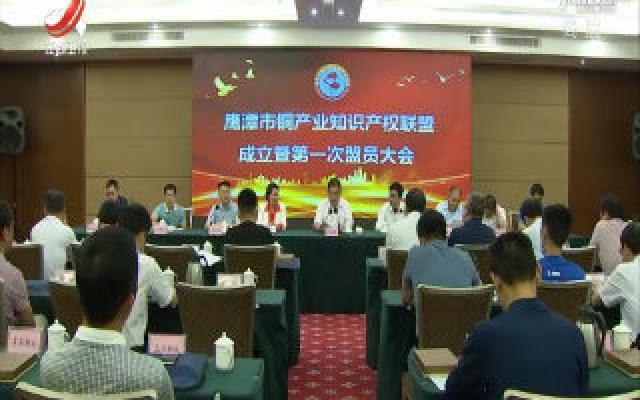 鹰潭市成立铜产业知识产权联盟