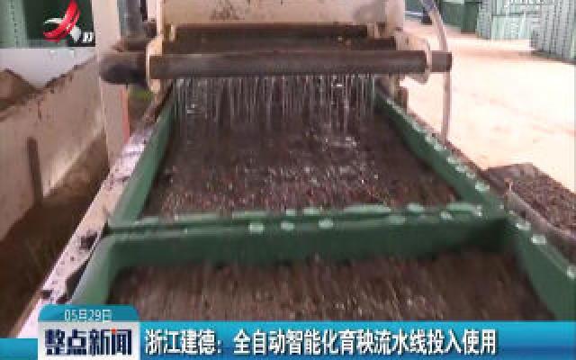 浙江建德:全自动智能化育秧流水线投入使用