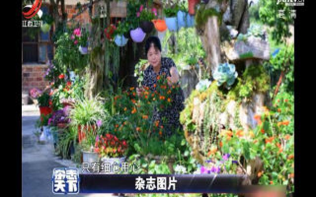 湖南:家庭主妇擅长废物利用 自家院子装扮温馨浪漫