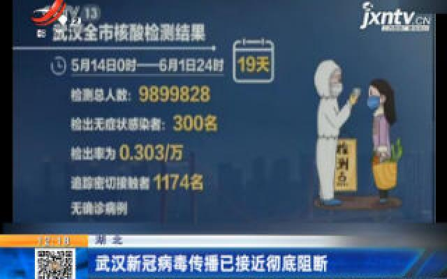 湖北:武汉新冠病毒传播已接近彻底阻断
