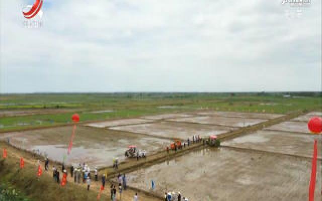 全省水稻侧深施肥现场观摩会在南昌举行