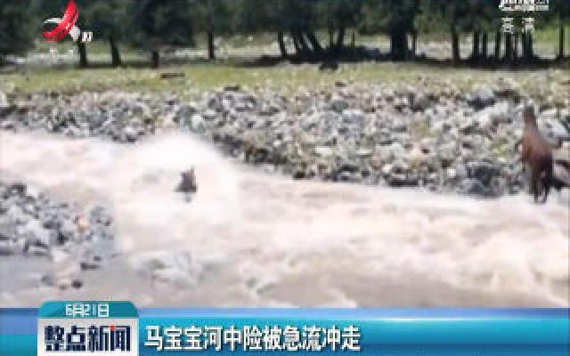 新疆:马宝宝河中险被急流冲走