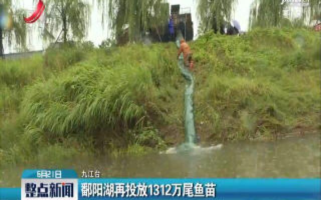 九江:鄱阳湖再投放1312万尾鱼苗