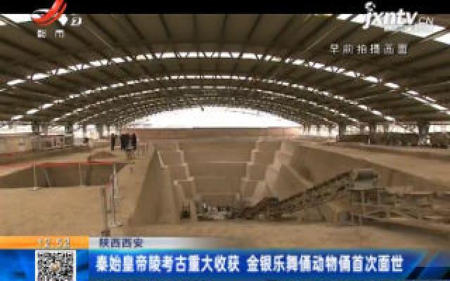 陕西西安:秦始皇帝陵考古重大收获 金银乐舞俑动物俑首次面世